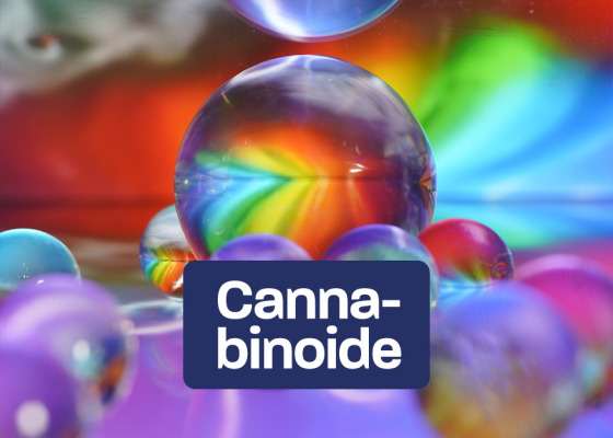 Cannabinoids –  Active ingredients of the cannabis plant - Cannabinoids –  Active ingredients of the cannabis plant