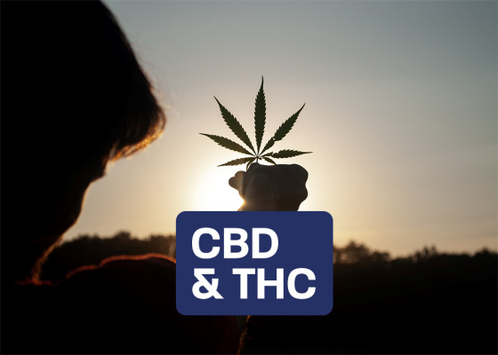 CBD and THC - CBD and THC - Similarities and Differences